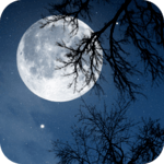 Relax Night ~ Nature Sounds icon