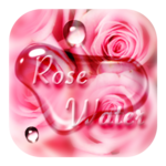 Pink Rose Flower Drops Theme icon