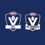 VFL for pc logo