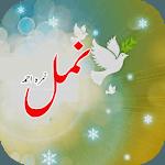 Namal urdu novel  Nimra Ahmed icon