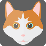 How To Choose and Care For A Cat icon
