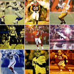 NFL Players Wallpaper App icon