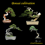 Bonsai cultivation for pc logo