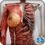 Female 3d anatomy - VR Atlas icon