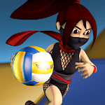 League Of Extreme Dodgeball for pc logo