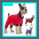 Cute Pet Clothing Ideas icon