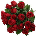 Roses Stickers For Whatsapp icon