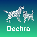 Dechra Dog and Cat Anaesthesia icon