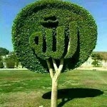 Kaligrafi Wallpaper icon