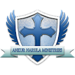 Ankur Narula icon