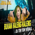 DJ BUKAN KALENG KALENG icon