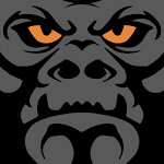 Gorilla Fleet Intelligence for pc logo