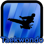 Taekwondo Kicks Videos - Offline icon