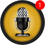 Voice Recorder Pro - Audio recorder for pc logo