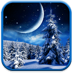 Winter Night Wallpaper icon