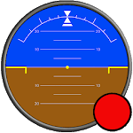 Flight Simulator Display icon