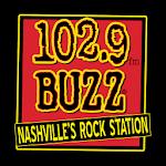 102.9 The Buzz icon