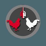 Dailyrapp icon