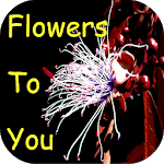 Flowers to You icon