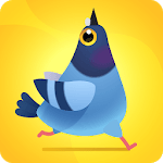Pigeon Pop for pc logo