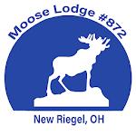 Moose Lodge #872 icon