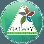 Glaze Galway icon