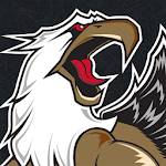 Grand Rapids Griffins Hockey for pc logo
