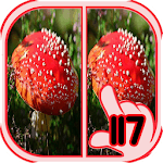 Find Difference mushroom icon