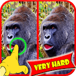 Find Difference Monkey Games icon