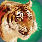 Talking Tiger icon