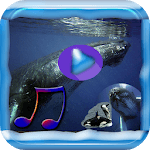 Sleeping Whale Song icon