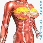 HUMAN ANATOMY & PHYSIOLOGY icon