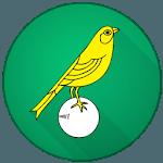 Norwich City Football News icon