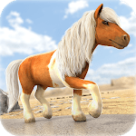 Little Pony Trails | Cute Game icon