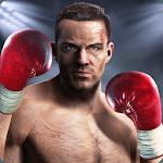 KO Punch icon