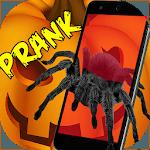 Spider 3D AR Prank Halloween icon
