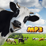 Funny Cow Sounds Audio icon
