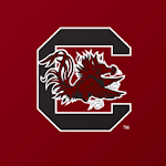 South Carolina Gamecocks icon
