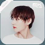 BTS V Wallpapers KPOP for pc logo