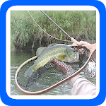 101 Tips Fly Fishing icon