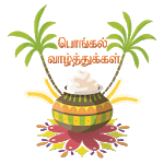 Pongal WhatsApp Stickers icon