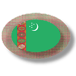 Turkmen apps and tech news icon