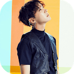 BTS J Hope Wallpaper KPOP icon