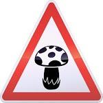 GeoMushroom - Mushroom picking Mycology icon