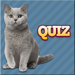 Cats Quiz icon