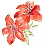Learn How To Draw Flowers - Step By Step Drawing icon