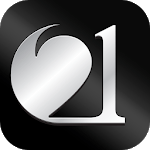 21 Connect icon