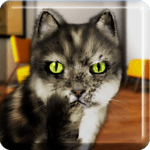 Talking Cat Funny for pc logo