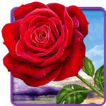 Rose. Magic Touch Flowers for pc logo