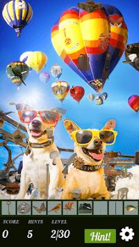 Hidden Object - Travelling Pets pc screenshot 2